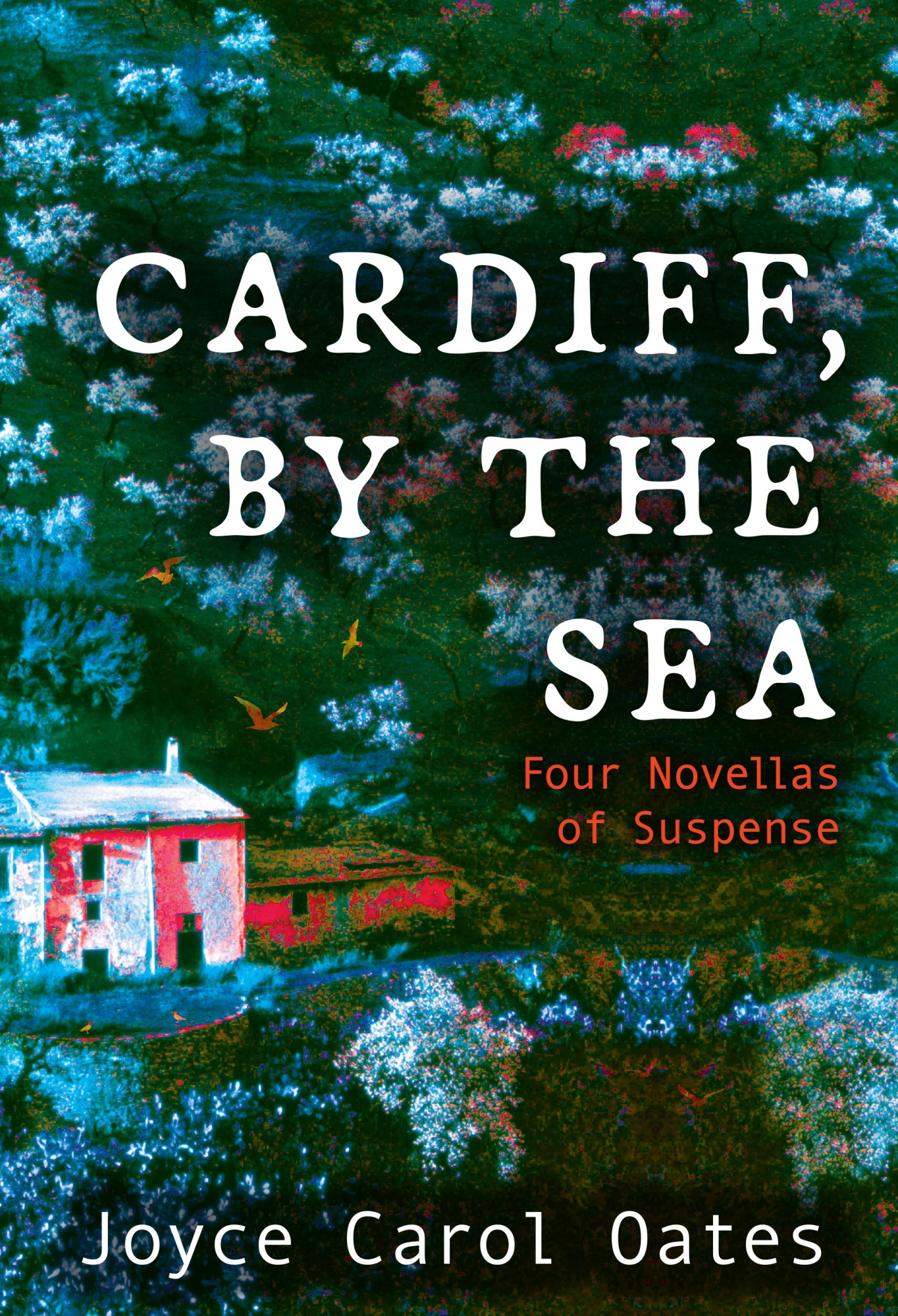 City of Darwin - Book - Cardiff By The Sea