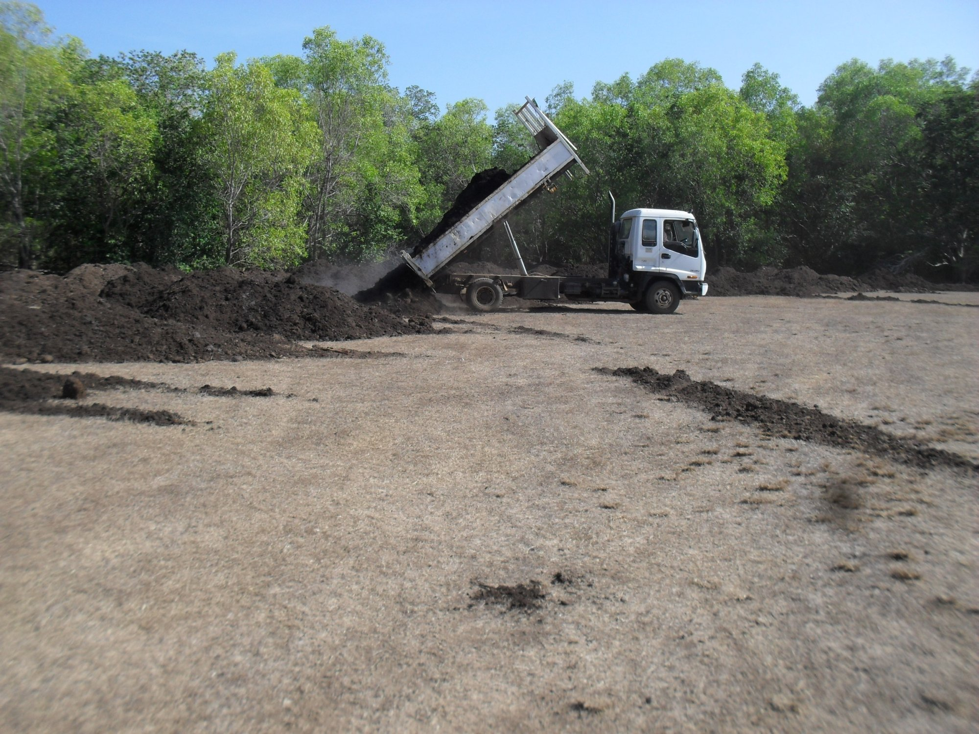 Stage 1 preparing the soil - revegitation of monsoon rainforest at East Point Reserve